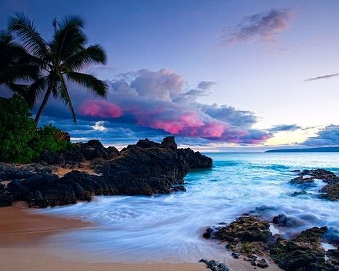 Hawaiian Paradise 2017
